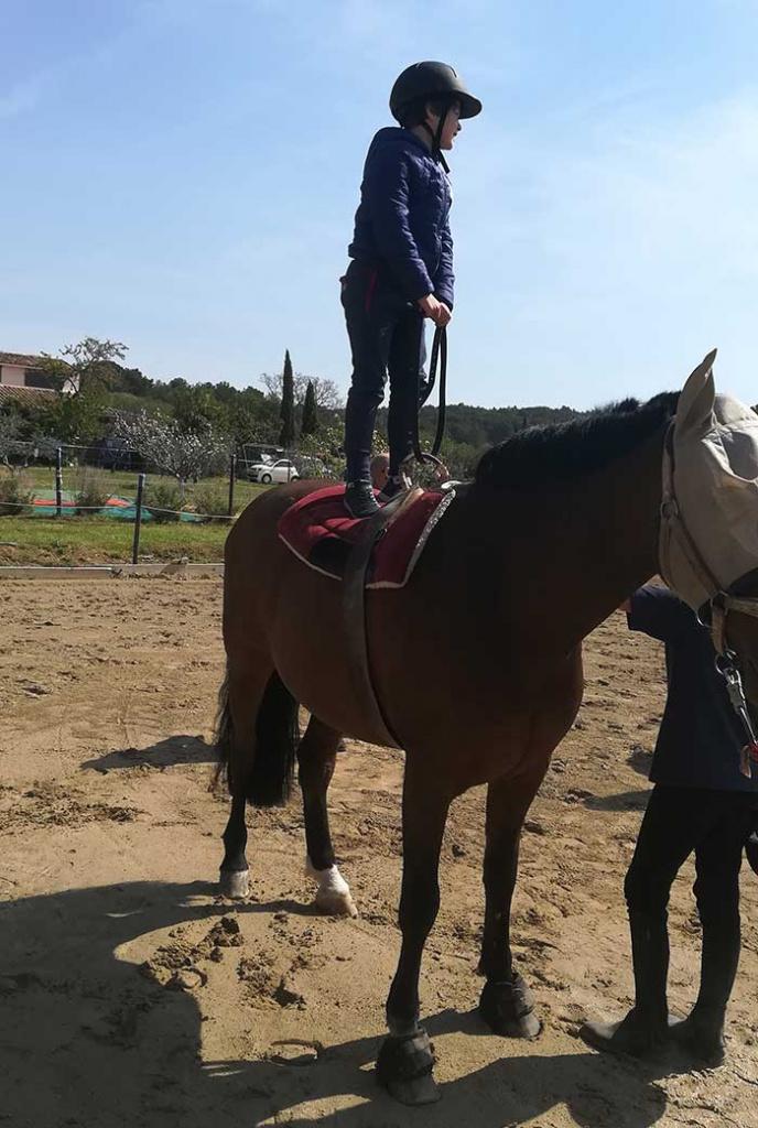 stage cirque et équitation